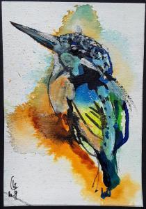 Oiseau du lac (2)